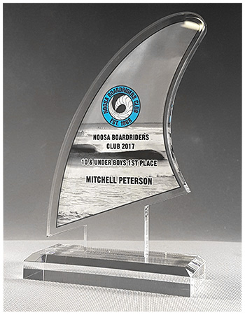 custom cut acrylic trophy